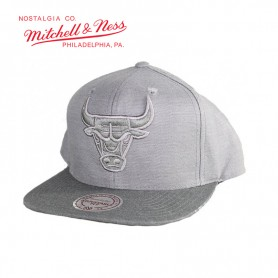 Casquette MITCHELL & NESS Chicago Bulls Gris Unisexe
